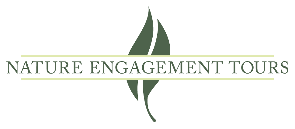 Nature Engagement Tours